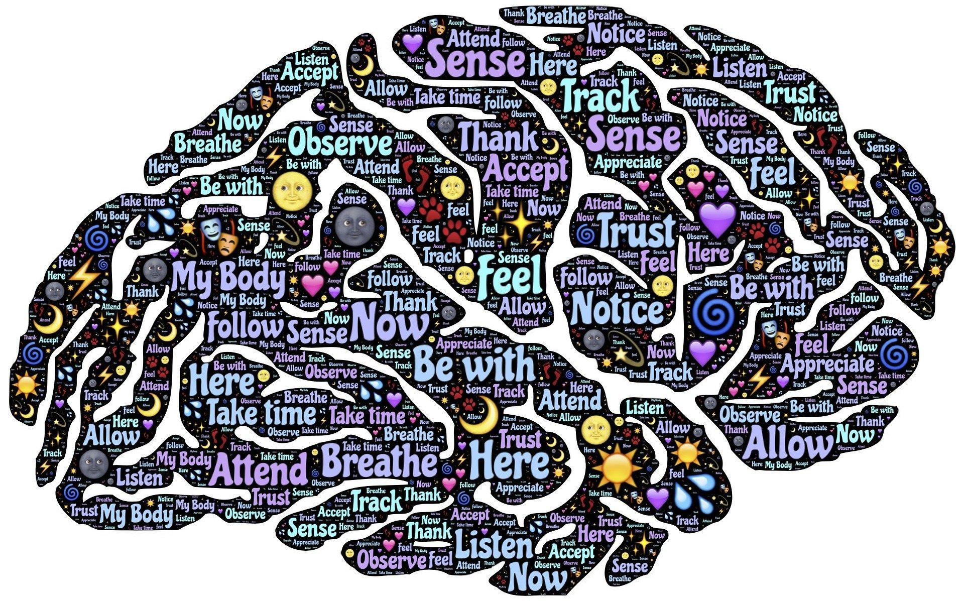 Meditar es sanar: bienvenidos al Mindfulness